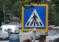 Minor accidentat pe trecerea de pietoni în Piatra Neamț
