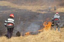 Sancțiuni pentru fermierii care îşi incendiază miriştile