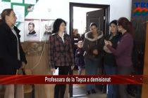 Profesoara de la Tașca a demisionat