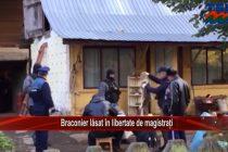 Braconier lăsat în libertate de magistrați