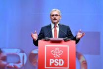 PSD Neamţ, alături de Liviu Dragnea