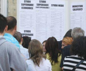 Locuri de muncă vacante în județul Neamț la jumătatea lunii iulie