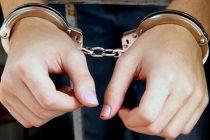 Bărbat din Dumbrava Roșie arestat preventiv pentru mai multe furturi