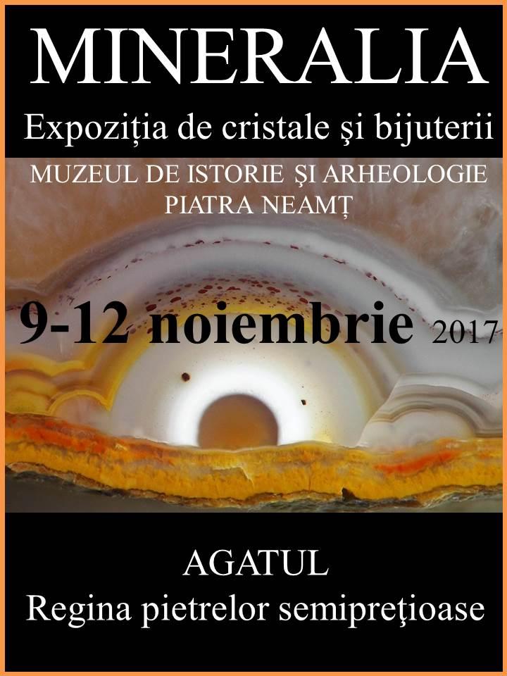 Mineralia Expozitie Piatra Neamt Agat