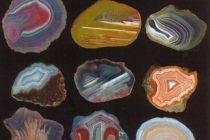 """Expoziţia de pietre preţioase """"Mineralia"""" la Piatra Neamţ"""