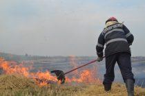10 hectare de vegetație uscată au ars în comuna Petricani
