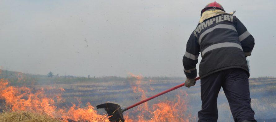 1 hectar de miriște a ars în localitatea Trifești