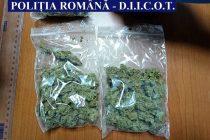 Patru tineri reținuți pentru trafic de droguri
