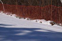 Pârtia de schi de la Piatra Neamţ rămâne închisă