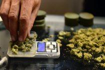 Cinci pietreni au fost reţinuţi pentru trafic de droguri