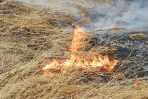 Bărbat din Sagna reținut pentru săvârșirea infracțiunii de distrugere prin incendiere