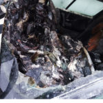 Incendiu masina Darmanesti