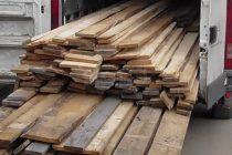Amendă de 10.000 lei pentru transport ilegal de material lemnos