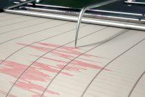 Un cutremur cu magnitudinea de 4,6 grade pe scara Richter s-a produs astăzi în zona Vrancea