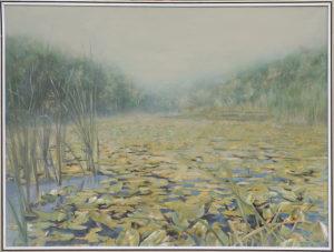 Lacul cu nuferi - Danut Aconstantinesei