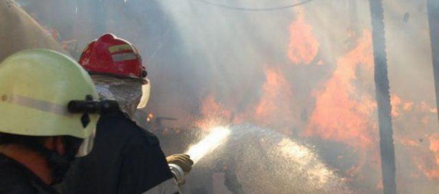 Un adăpost de animale a luat foc din cauza unui cablu electric neizolat