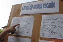 Locuri de muncă vacante în Neamţ, la data de 23 aprilie