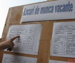 513 locuri de muncă vacante în județul Neamț