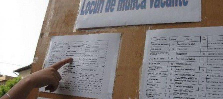 417 locuri de muncă vacante în Neamț la începutul lunii noiembrie