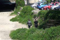 Un bărbat a căzut în albia pârâului Cuiejdi. A fost necesară intervenţia pompierilor.