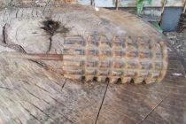 Grenadă din Primul Război Mondial descoperită la Gârcina