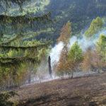 Incendiu vegetatie Tosorog 3