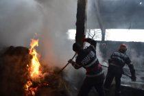 Pompierii au intervenit pentru stingerea unui adăpost de animale