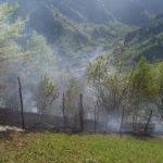 incendiu vegetatie Tosorog 4