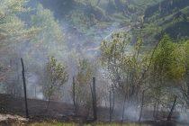 1,5 hectare de vegetaţie au ars la Toşorog, în urma unui incendiu