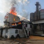 Incendiu moara Petricani (8)