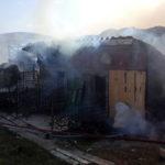 Incendiu stana Gadinti (55)