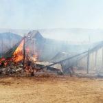Incendiu stana Gadinti (66)