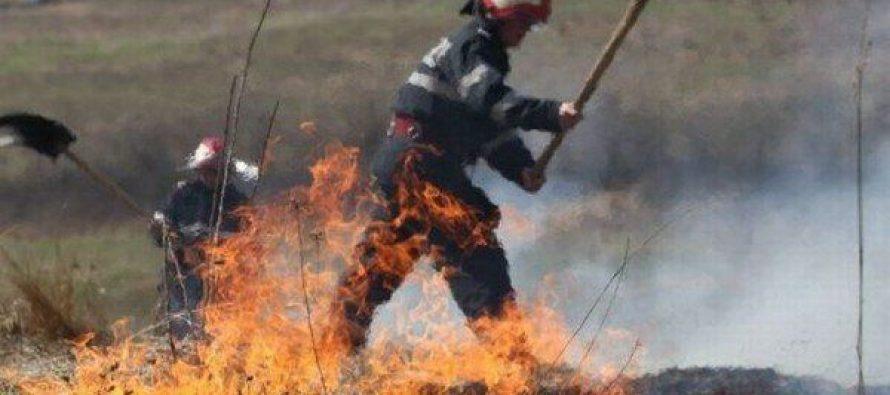 15 tone de vegetație și deșeuri au ars într-un incendiu, în municipiul Roman