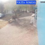Cautat de politisti insusirea bunului (2)