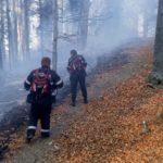 Incendiu de padure Vanatori Neamt