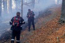 Incendiu de pădure extins pe 5 hectare în zona Vânători Neamţ