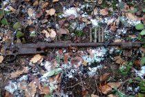 Muniție neexplodată din Al Doilea Război Mondial descoperită la Vânători Neamț