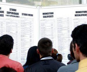 794 locuri de muncă vacante în Neamț la sfârșitul lunii septembrie