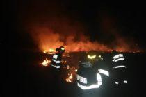 Week-end greu pentru pompieri: 22 incendii de vegetație
