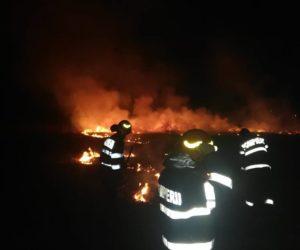 3 hectare de vegetație au ars într-un incendiu în comuna Sagna