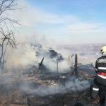 Incendiu adapost de animale (11)