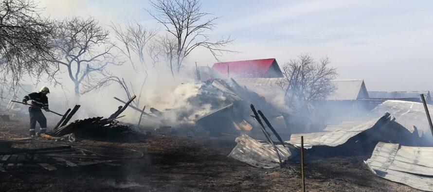 Un adăpost de animale din comuna Ion Creangă a ars din cauza unui scurtcircuit