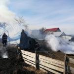 Incendiu adapost de animale (44)