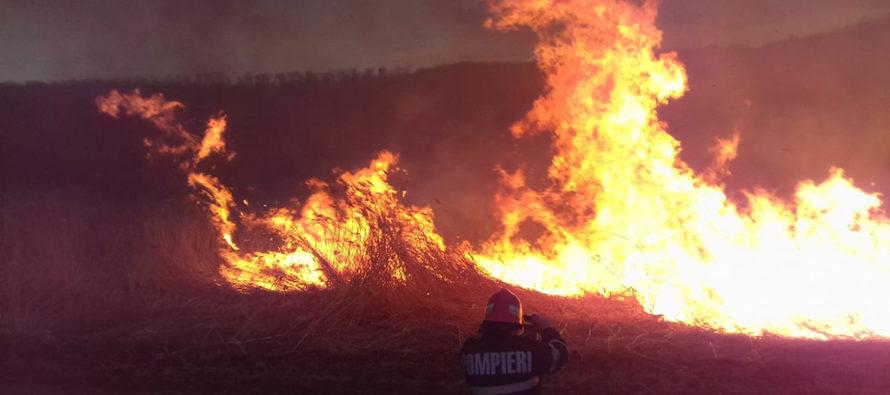 """6 tone de gunoi au ars la Roman din cauza unei """"țigări aruncate la întamplare"""""""
