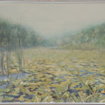Lacul-cu-nuferi-Danut-Aconstantinesei