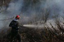 10 hectare de pădure și vegetație au ars la Bicaz într-un incendiu provocat intenționat