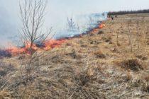 Incendiu de vegetație pe o suprafață de 6 hectare la Negrești