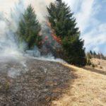 Incendiu vegetatie Ceahlau 3