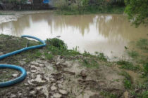 Pompierii au intervenit pentru evacuarea apei din 5 curți inundate, în comuna Ion Creangă