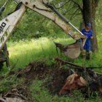Caruta cu cai cazuta in bistrita (3)